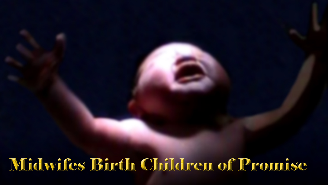 Midwifes Birth Children of Promise