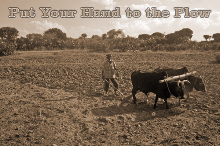 Put Your Hand To The Plow